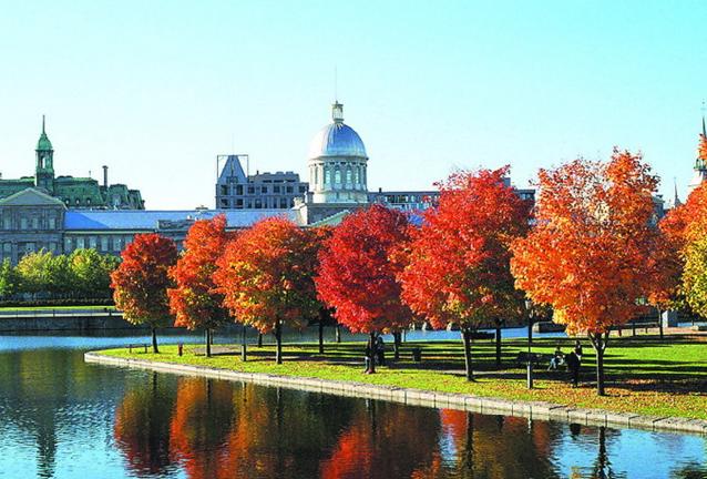 加拿大留学研究生申请策略,不早做准备怎么行?