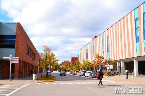 约克大学世界排名