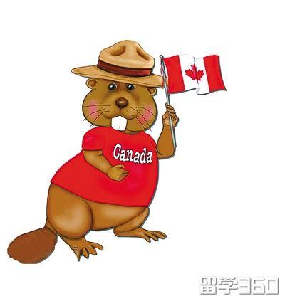 加拿大留学生活经验