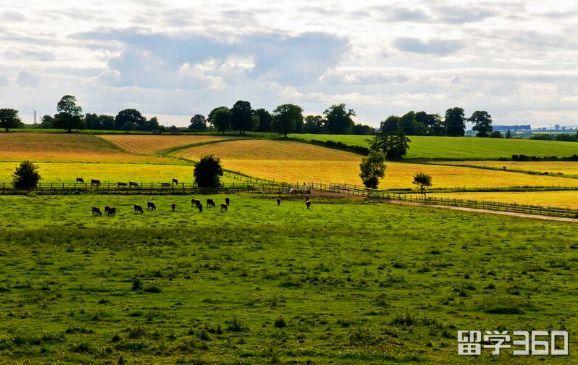 """爱尔兰教育――地道的""""英式""""风格"""