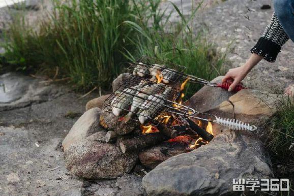 瑞典夏季丨愉快又美味的特色瑞典式活动――烧烤