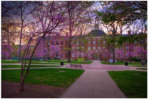 美国加利福尼亚州有哪些知名大学?