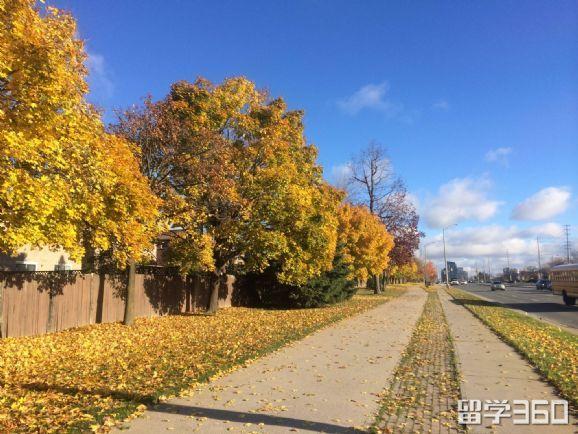 多伦多大学住宿环境 多伦多大学住宿环境
