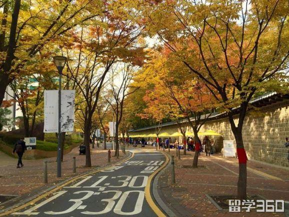 韩国大学排行榜