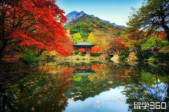 韩国留学申请条件