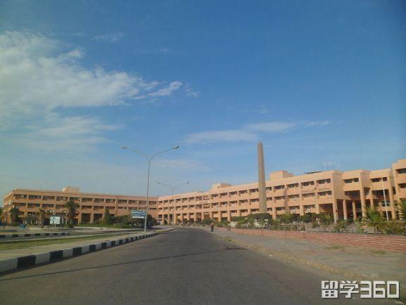 埃及姆努菲亚大学专业
