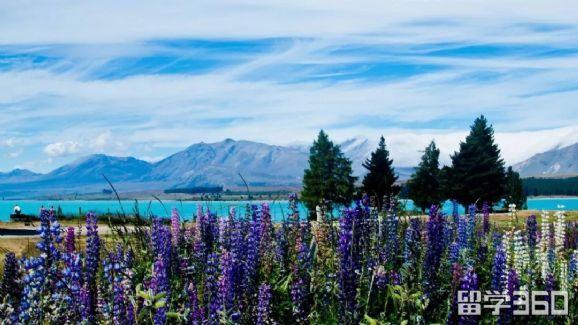 新西兰签证