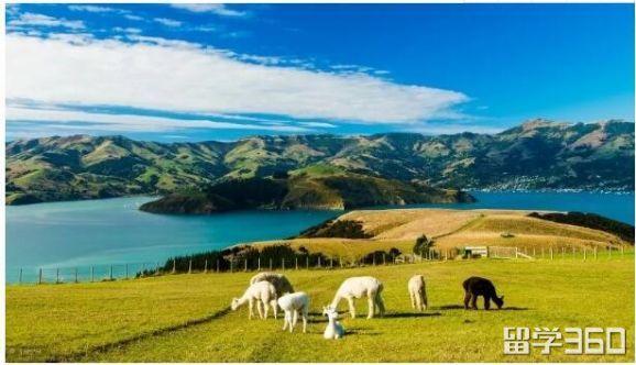 新西兰留学安全小知识要仔细看