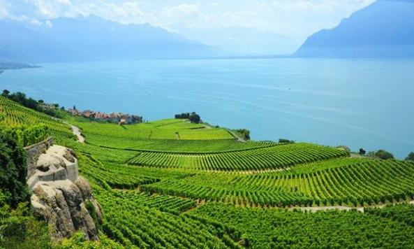 瑞士留学学费