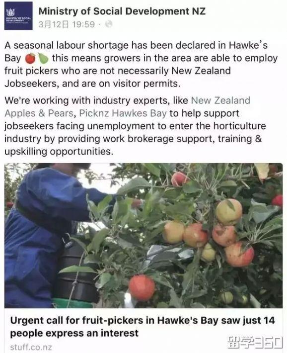 新西兰热门行业