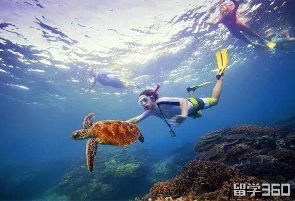 澳洲风景美如画,黄金海岸十大景点介绍!