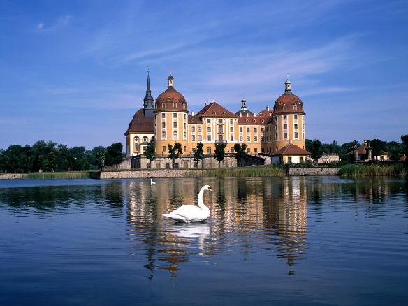 2019德国弗莱堡大学院系设置