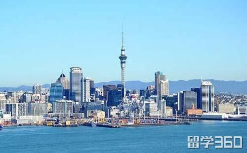 新西兰不会开车留学