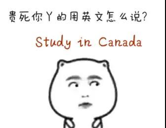 今天带大家算一算,在加拿大留学一年到底要花多少money !