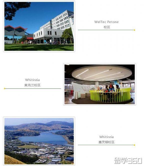 新西兰留学:惠灵顿理工学院和维特利亚国立理工学院
