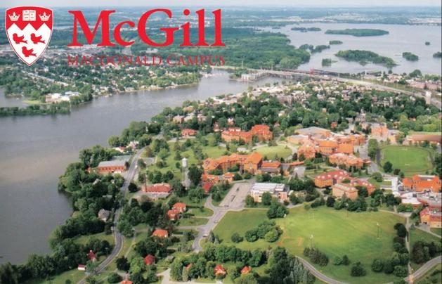 加拿大麦吉尔大学正经辟谣,揭开麦吉尔的神秘面纱