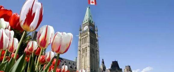 加拿大曼省留学转移民项目―――移居加国很容易!