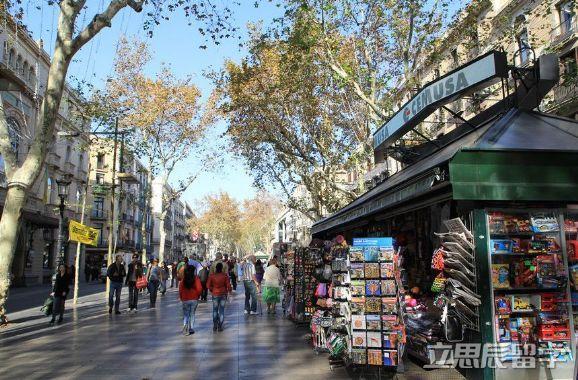 去西班牙留学如何选择留学专业?