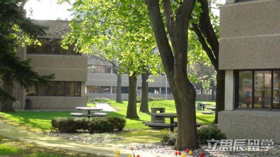 分阶段盘点加拿大留学申请到底需要哪些材料呢?