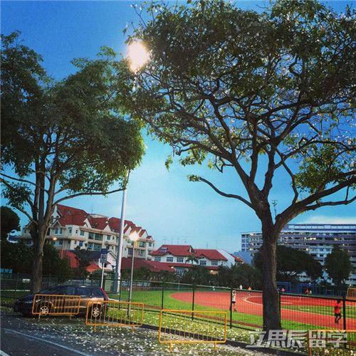 解读新加坡DP政策