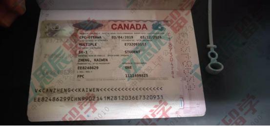 合理规划,优秀团队指导成功拿到加拿大TRV签证