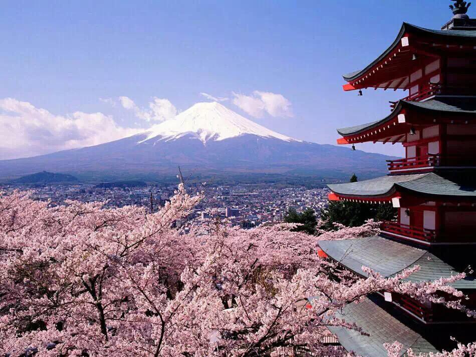 新学年来临,准备日本留学的你要注意些什么?