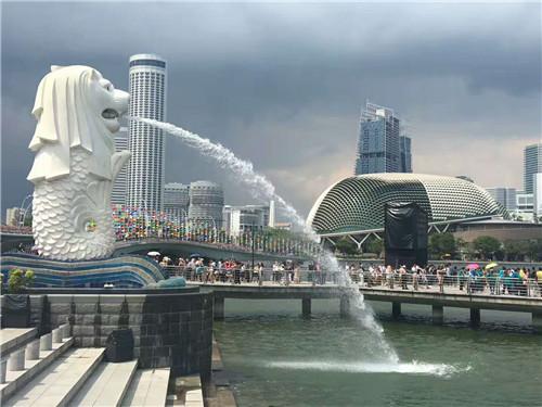 在新加坡留学生活需要准备哪些卡?