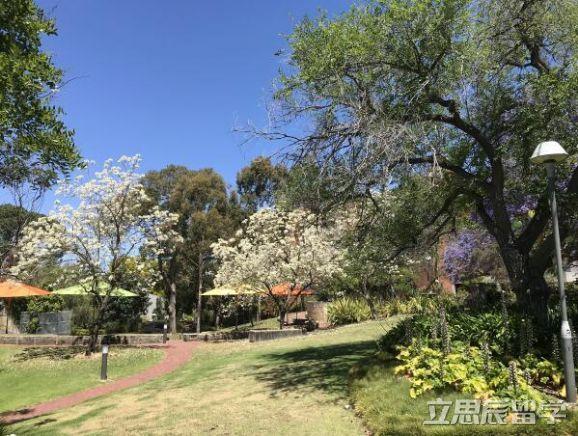澳大利亚留学中不一样的珀斯,不一样的科廷大学