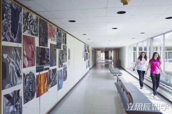 出色作品集助力,高中申请芝加哥艺术学院平面设计专业获录!