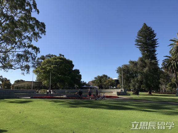 在澳大年夜利亚留学文科生选甚么专业好?