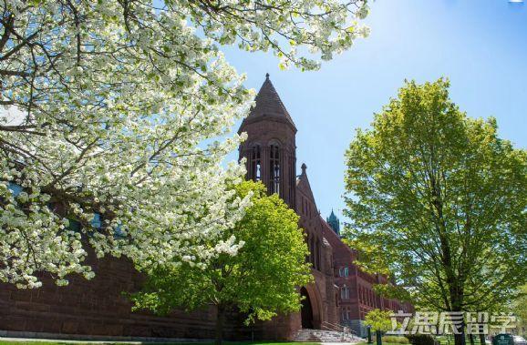 高质量实习助力,转专业申请获密歇根大学会计硕士录取!