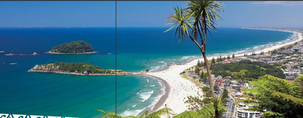 新西兰留学怀卡托大学陶朗加校区开设课程介绍
