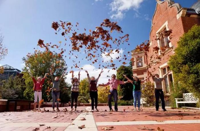 留学新西兰:新西兰林肯大学奖学金种类有哪些