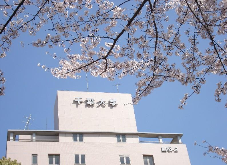 千叶大学亚洲排名