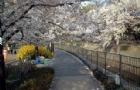 留学日本第一步