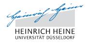 杜塞尔多夫大学