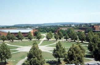 拜罗伊特大学