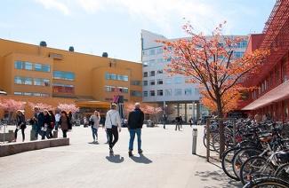 延雪平大学