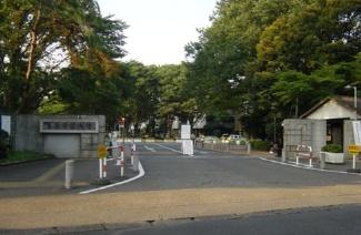 东京学艺大学