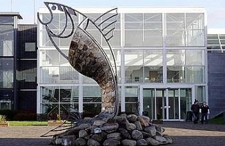 斯莱戈理工学院