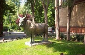 挪威兽医学校