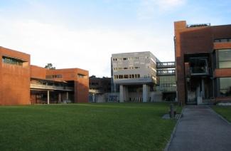 阿哥德大学