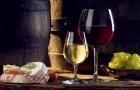 瑞士留学精彩生活之红酒节
