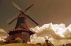 荷兰留学的语言相关事项简述