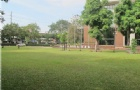 泰国大学奖学金多吗