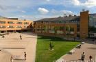 萨里大学四大热门专业一览