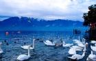 瑞士留学签证过程