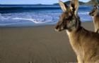 澳洲留学行前准备!你想知道的都在这里!