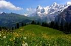 瑞士留学优势专业解析