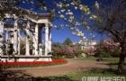 英国留学:卡迪夫学院留学感受
